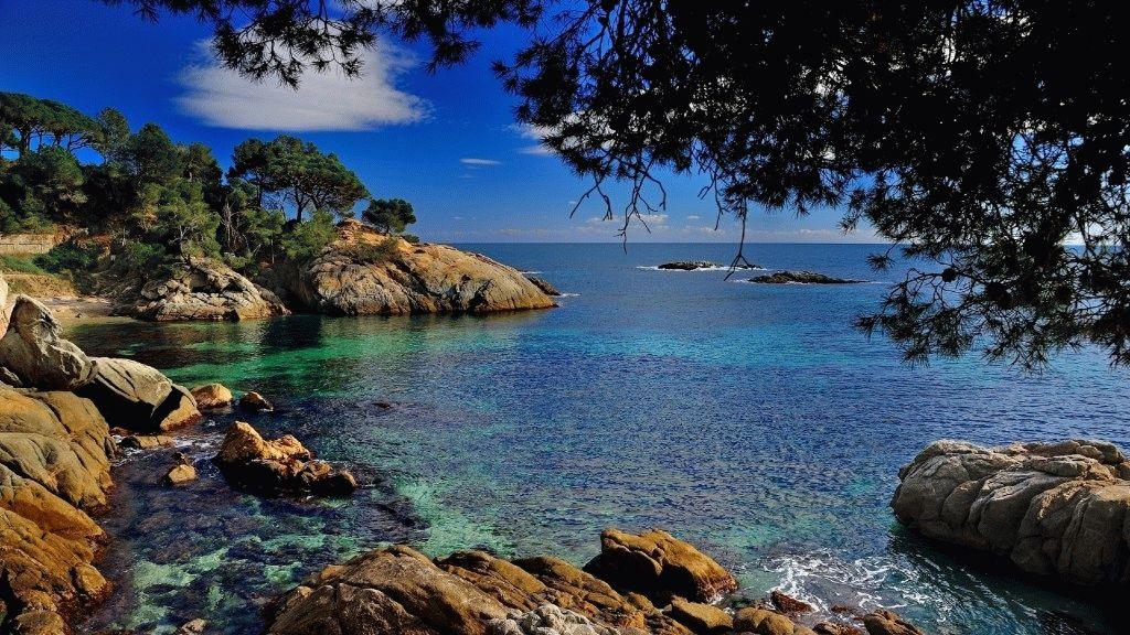 какие моря омывают турцию