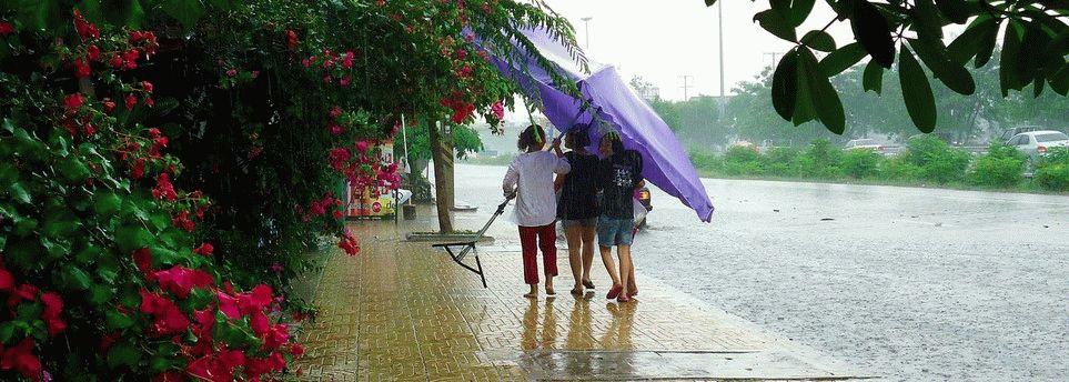 Сезон дождей в Таиланде1