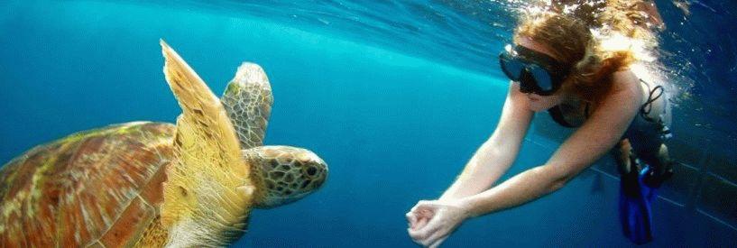 Симиланские острова - Экскурсии