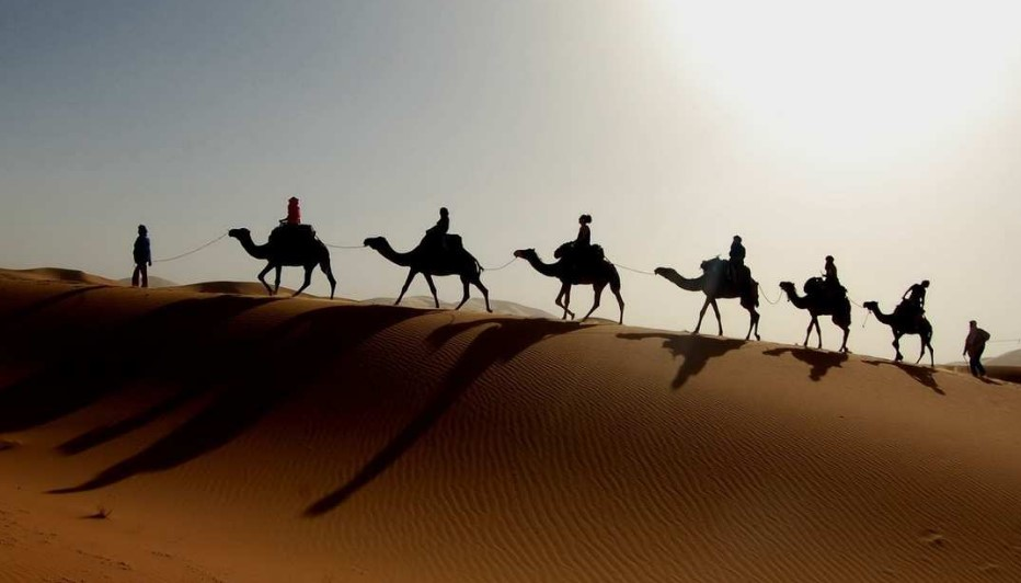 экскурсии в Тунисе2