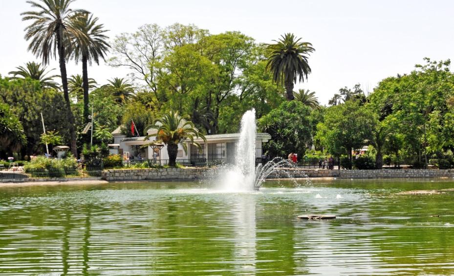 парк Бельведер - Тунис2