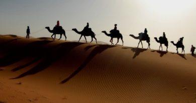 Где побывать в Тунисе в ноябре