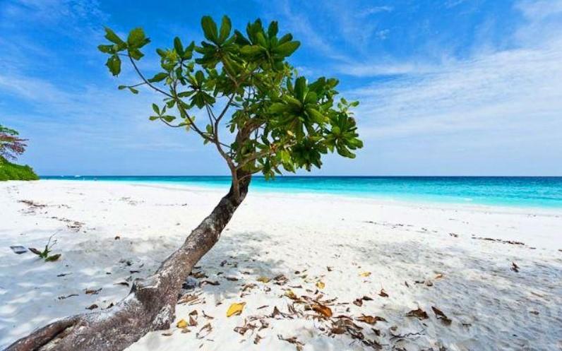 Райский остров Тачай в Тайланде