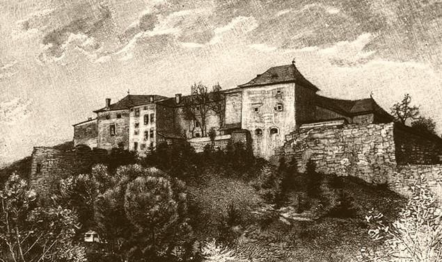 Ужгородский замок - история