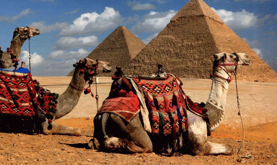Когда дешевле ехать в Египет фото