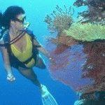 подводные экскурсии в Кемере