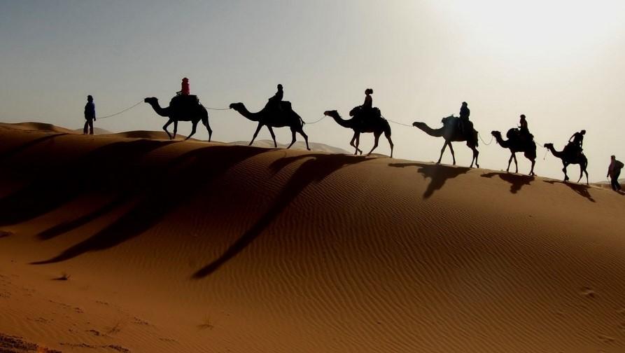 Где отдыхать в Тунисе в ноябре фото