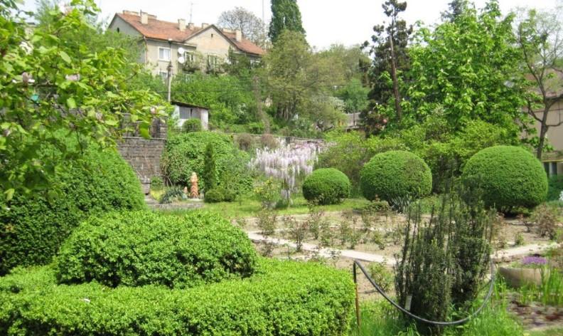Ужгородский ботанический сад фото