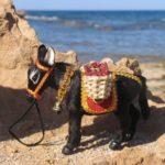Кипрский ослик